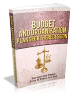 Budget And Organization Plans ...