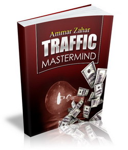 Traffic Mastermind