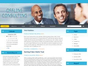 Offline Consulting